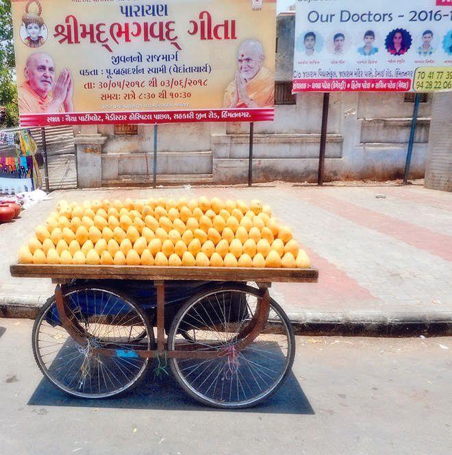sabarkantha foodposining effect,in use of mango