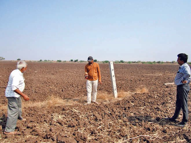 Six lakh hectares of land have not been Planted in Surendranagar district