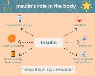 ડાયાબિટીસ નિયંત્રણમાં મહત્ત્વની ભૂમિકા ભજવતું ઈન્સ્યુલીન
