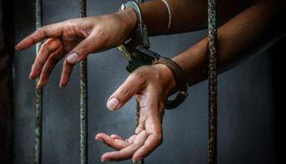 અમેરિકામાં ગુજરાતની હેમા પટેલને 'કબૂતરબાજી' માટે ત્રણ વર્ષની જેલ