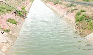 માળિયા કેનાલમાંથી અંતે છેવાડાનાં ગામોમાં પાણી પહોંચ્યું