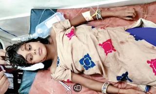 તુલસીશ્યામના કાતરમાં દીપડાનો 10 વર્ષની બાળકી પર હુમલો
