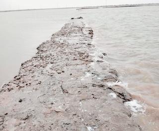મોરબીમાં ભારે વરસાદને પગલે મીઠા ઉદ્યોગને 5 કરોડથી વધુનું નુકસાન
