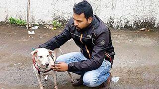 વિકૃતિની પરાકાષ્ઠા : મુંબઈમાં યુવકે કૂતરી સાથે સૃષ્ટી વિરુદ્ધનું કૃત્ય કર્યું