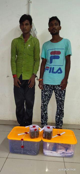 કોસંબા :કોસંબા નજીક  દીણોદ ચોકડી પરથી બાઇક સવાર બે યુવાનો ગાંજા સાથે પકડાયા