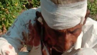 ભુરાંટી બનેલી ગાયે શાળાના વિદ્યાર્થી સહિત છ વ્યક્તિઓને કર્યા ઘાયલ