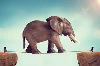 મનનો અભિગમ જે બદલી શકે, તેને મુશ્કેલીમાં માર્ગ મળી રહે