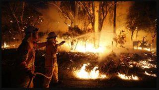 ઓસ્ટ્રેલિયાના જંગલમાં લાગેલી આગથી 24 લોકોના મોત