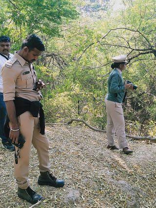 વનવિભાગ દ્વારા વડોદરામાં મગરની શરૂ કરવામાં આવી ગણતરી