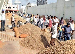રાજ્ય સરકાર દ્વારા ટેકાના ભાવે પાંચ લાખ ટન મગફળીની ખરીદી કરાઈ