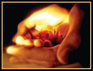 પરિશ્રમ-પ્રામાણિકતાથી કમાયેલું ધન સુખ, શાંતિ, આનંદ આપે