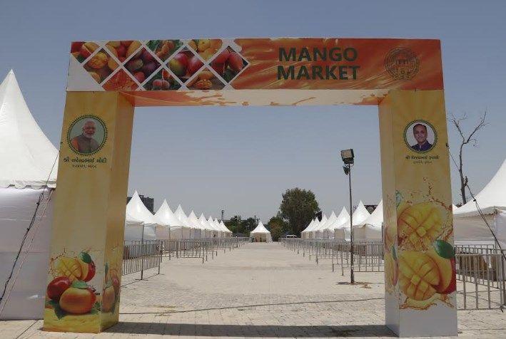 mango market at GMDC ground