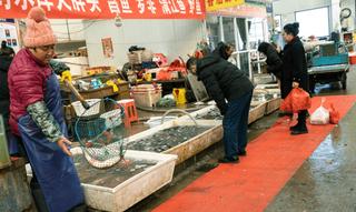 ચીને વુહાનમાં જંગલી પ્રાણીઓના ખાવા પર પ્રતિબંધ મૂક્યો