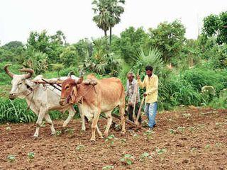 કૃષિ સુધારા બિલ અંગે ખેડૂતોને સમજ આપવા ભાજપ સંગઠનને કામે લગાડશે: પાટીલ