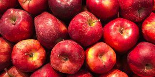 હિમાચલ પ્રદેશના સફરજન ઉત્પાદનને જીએસએફસીનાં ખાતરો થકી ફાયદો મળશે