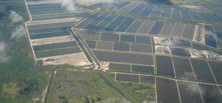 ઓલપાડના ચાર ગામના 150 ઝીંગા તળાવના કબજેદારોને દબાણ દૂર કરવા મામલતદારની નોટીશ