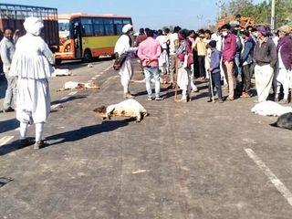 બાબરા પાસે ટ્રકે 70 ઘેટાંને અડફેટે લીધાં 22ને કચડી માર્યાં, હાઈવે લોહીલુહાણ