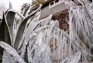 અમેરિકાના ટેક્સાસમાં ભારે હિમવર્ષાથી ફ્લાઇટસ રદ, 23 લાખ ઘરોમાં અંધારપટ