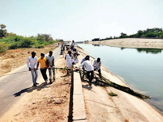 Vav's youth is suspected to have drowned in the main Narmada canal of Tharad