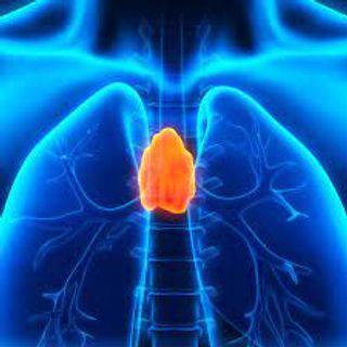 શરીરમાં એક એવી ગ્રંથી જે આપણી સાત પેઢીઓમાં આવેલા રોગોની નેગેટિવ રાખે છે